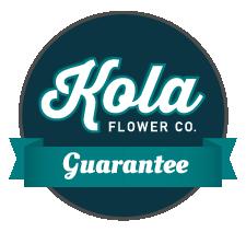 The Kola Guarantee Icon